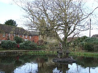 Photo of Lingfield Pond